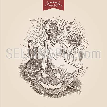 Halloween witch cat pumpkin handdrawn engraving style template poster banner print web site pen pencil crosshatch hatching paper painting retro vintage vector lineart illustration.