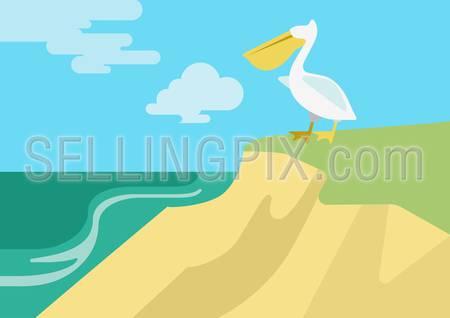 Pelican on the beach river bank habitat flat design cartoon vector wild animals birds. Flat zoo nature children collection.