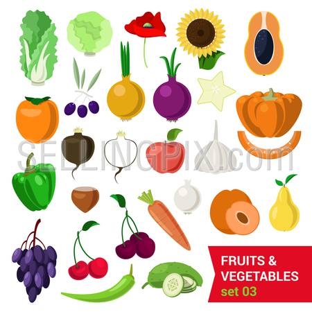 Flat style fancy quality set of fruit and vegetable set. Cabbage salad sunflower nut olive poppy persimmon carrot pear onion carom apple grape cherry cucumber chestnut turnip. Creative food collection