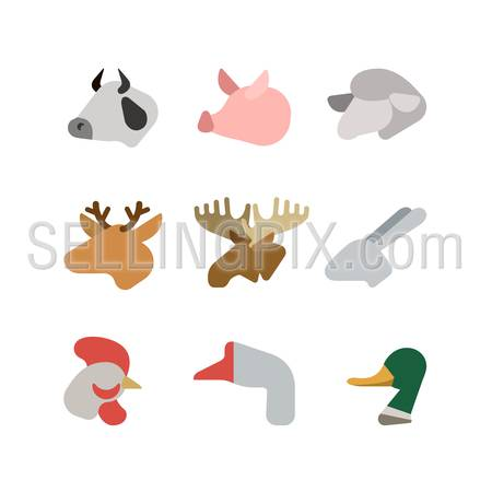 Flat animal heads creative style modern infographic vector icon set. Cow pig lamb deer elk rabbit chicken goose duck. Zoo icons collection.
