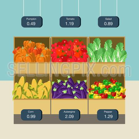 Flat style agriculture vegetable market showcase box web infographic icons. Pumpkin tomato pepper corn eggplant aubergine salad. Website infographics collection.