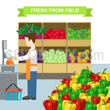 Flat style man worker agriculture vegetable fruit market showcase box web infographic icons. Beet pomegranate apple grape salad onion pepper. Website infographics collection.
