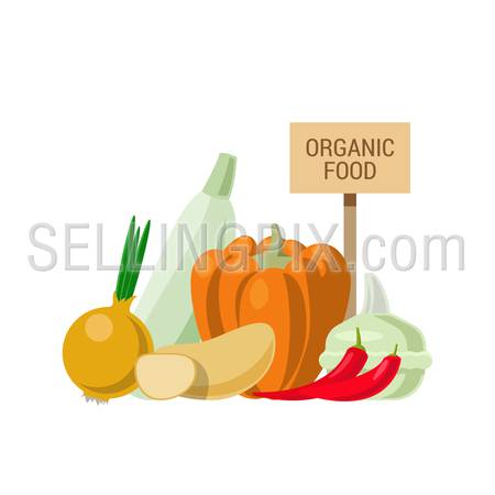 Flat style agriculture vegetable healthy food web infographic icons concept. Collage of onion pumpkin chili pepper eggplant potato and wooden signboard. Website infographics collection.