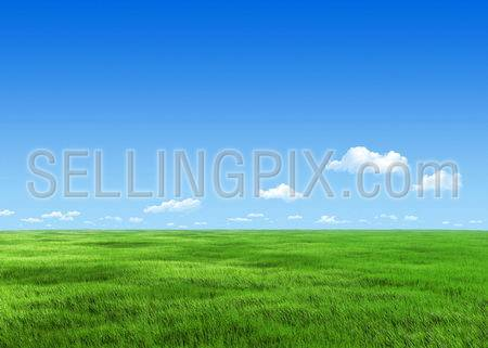 6000px nature collection – Green meadow